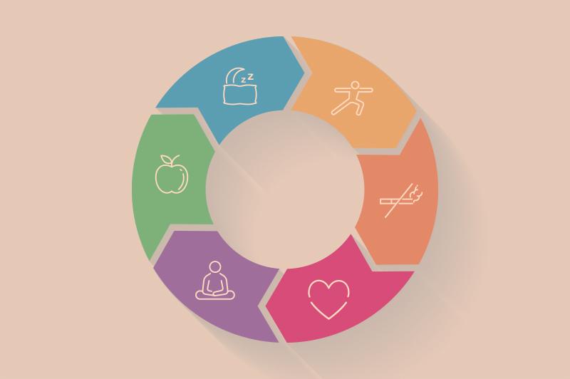 Infográfico ilustando os 6 pilares da Medicina do Estilo de Vida e hábitos saudáveis
